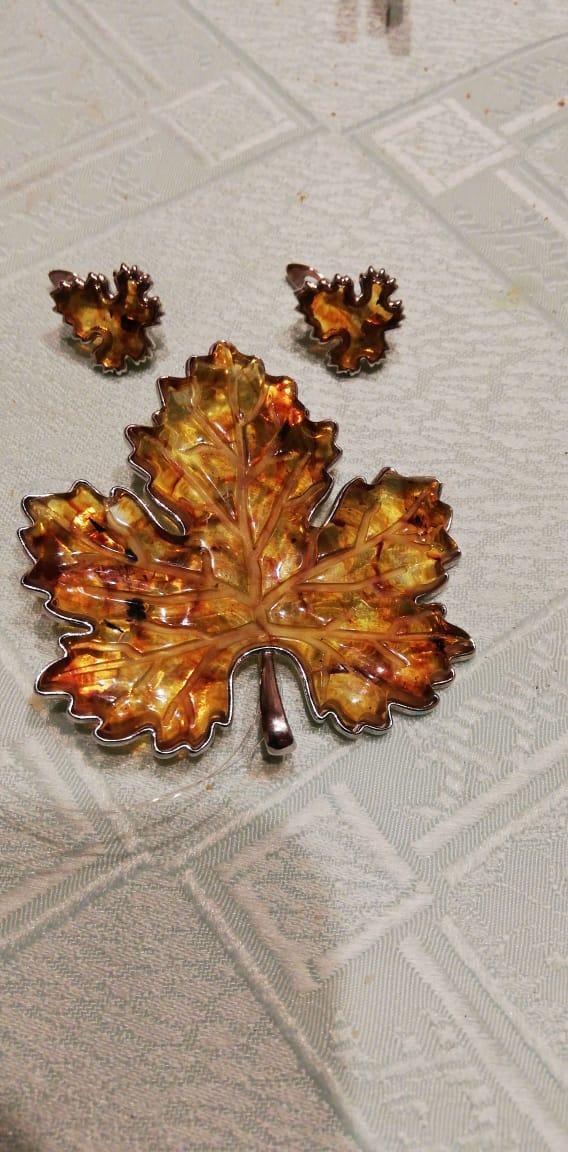 Кленовые, осенние листья