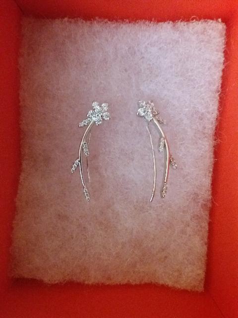 Эльфийские серёжки